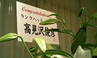 Hanatakami